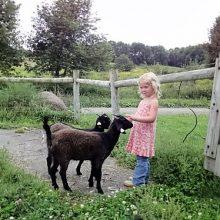 Hermit Pond Farm