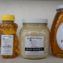 Resilience Apiary and Diversified Farm