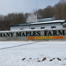 Many Maples Farm