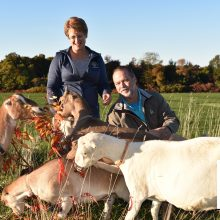 Silly Goats Farm