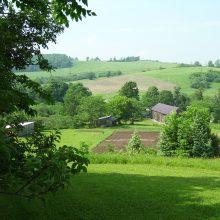 G&M Farms